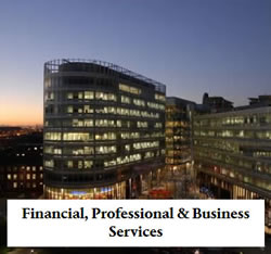 Financial professional services